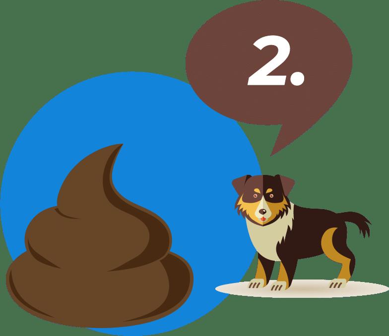 Pet waste